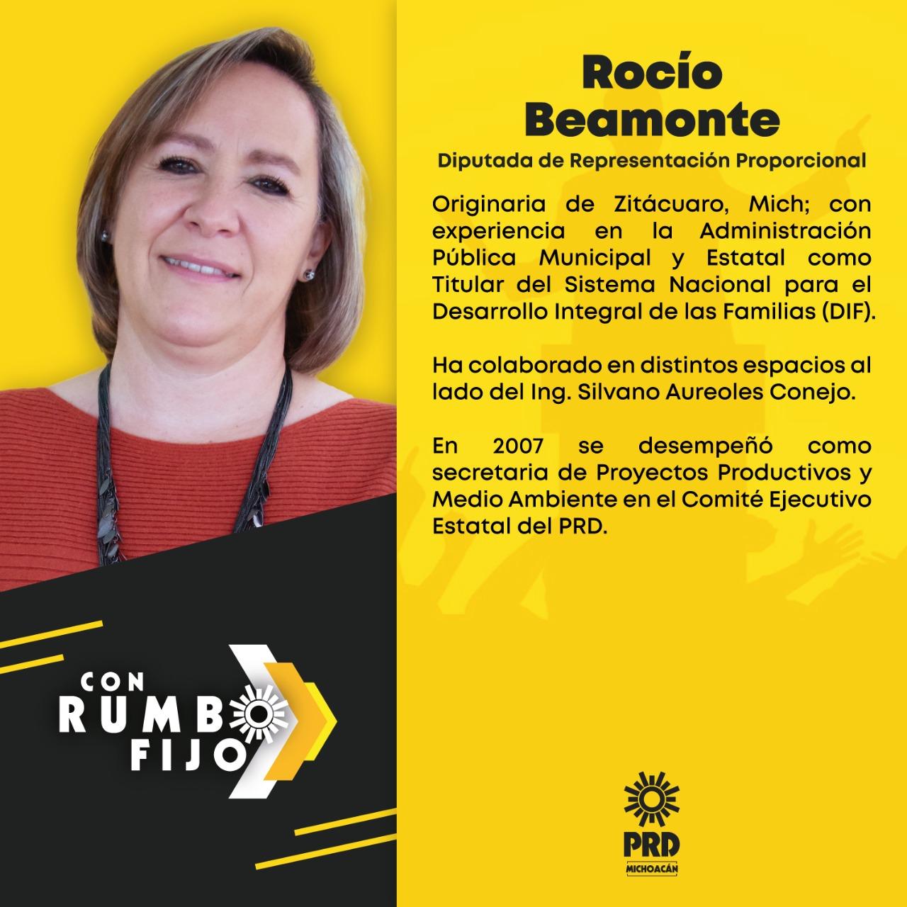 Rocío Beamonte, Diputada de representación proporcional